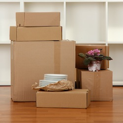 moving boxes in empty room